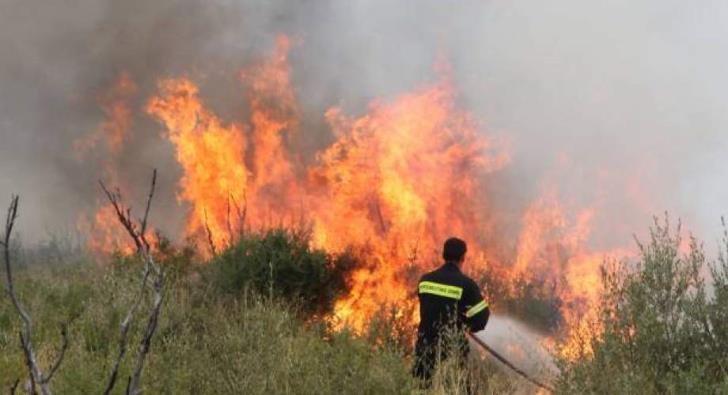 Suspected arson in Tsada fire