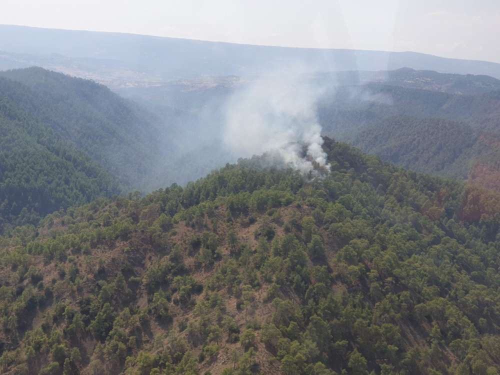 Updated: Blaze in Paphos forest contained