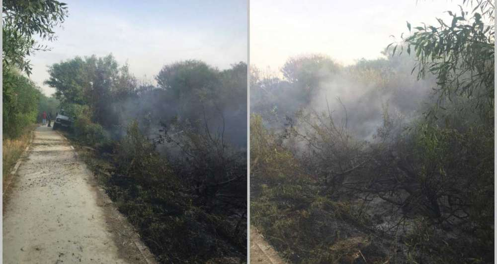 Fire near the Pattichion Municipal Theater of Larnaca under full control