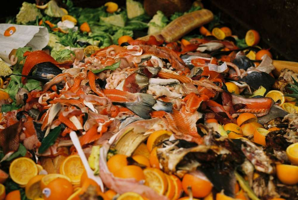 France is most food sustainable country