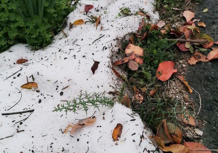 Paphos weather: Rarely seen hail falls in Tsada (photos)