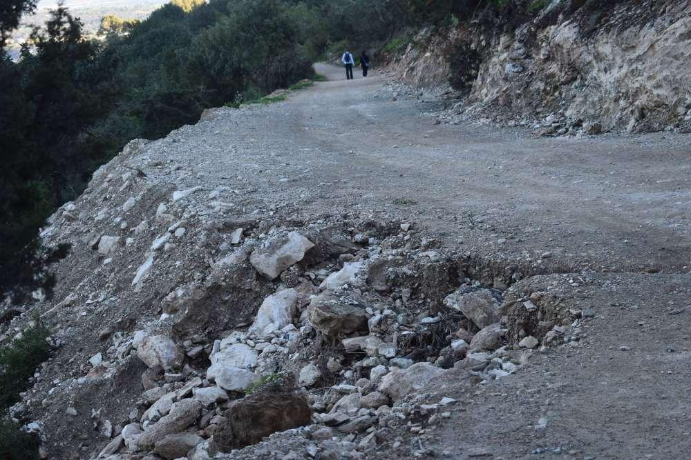 Greens blast Akamas road widening as 'ecological disaster'