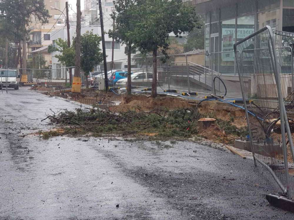 Greens party: Trees cut down on Kyriakou Matsi (photos)