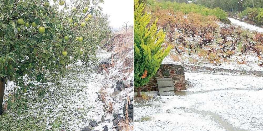 Hail storm brings 'black day' for Kyperounta farmers