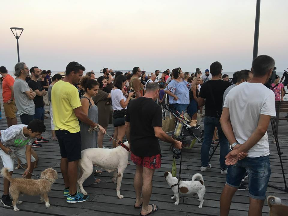 Owners take dogs to Molos to protest ban (photos)