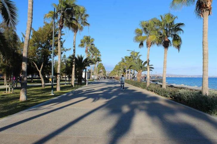 Petition launched to allow dogs at Limassol's molos