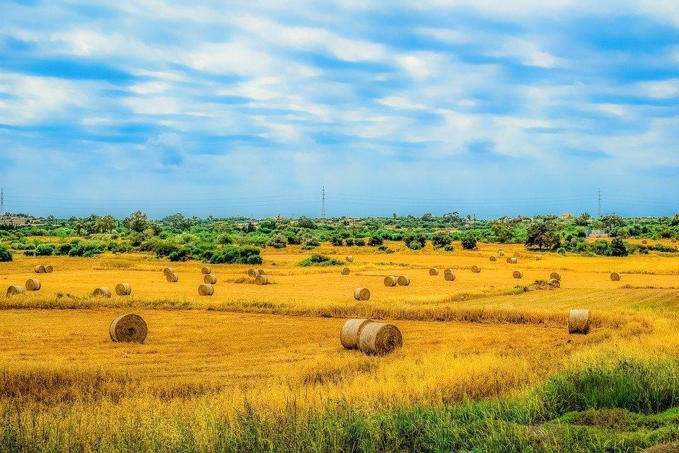 Paralimni: a hidden gem of Cyprus