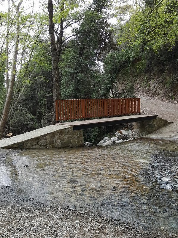 Forestry Department: Troodos mountain trails dangerous after bad weather