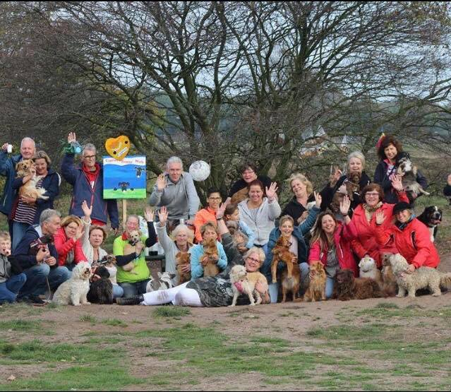 Happy reunion for Cypriot dogs in Holland