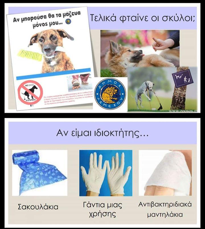 Animal lovers angered by dog ban at Limassol's  Molos promenade