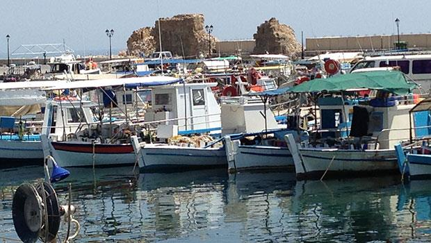 Professional fishermen in Paphos cry for state help