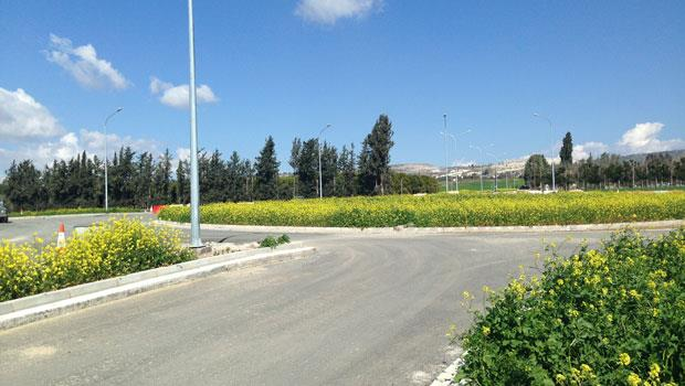 Paphos Chamber of Commerce: 'Green bridges could resolve motorway impasse'