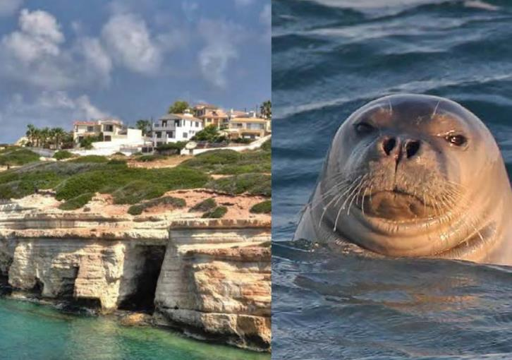 Environment Dept publishes list of species in Peyia sea caves area; protection measures