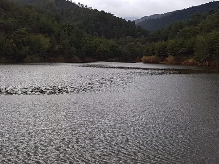 Dams see steady inflow of water