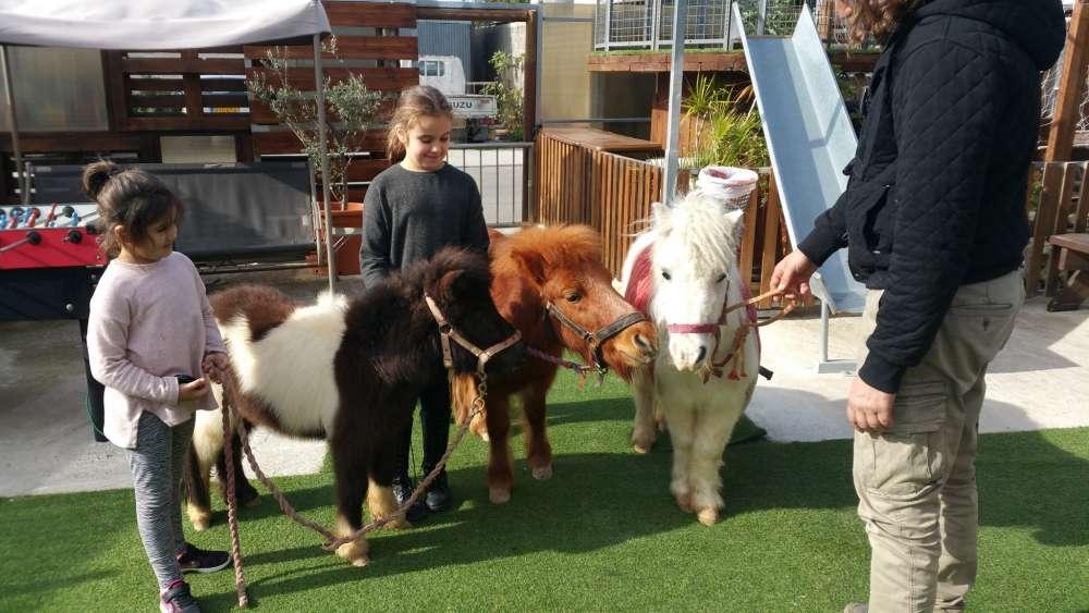 Pony Park in Limassol