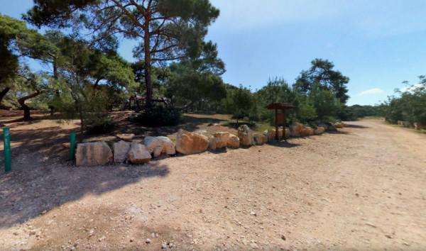 Pykni Picnic Site