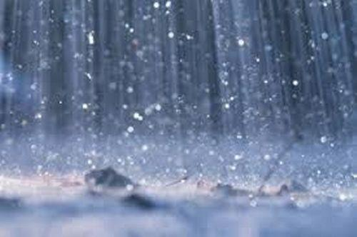 Sunday predicted cloudy with possibility of showers