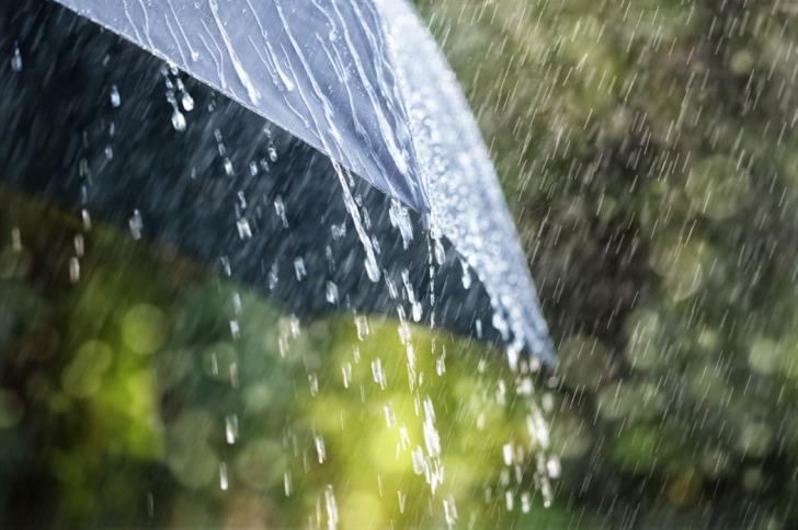 More rain and isolated thunderstorms