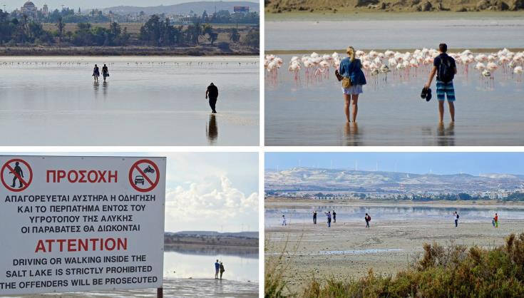 Larnaca wants action to stop public from pestering birds at salt lake