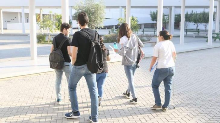 Percentage of pupils who drop out of school in Cyprus increased