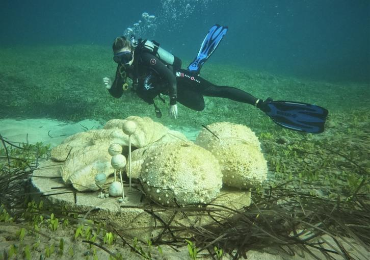 Underwater sculpture composition of supernatural size shells in Paphos