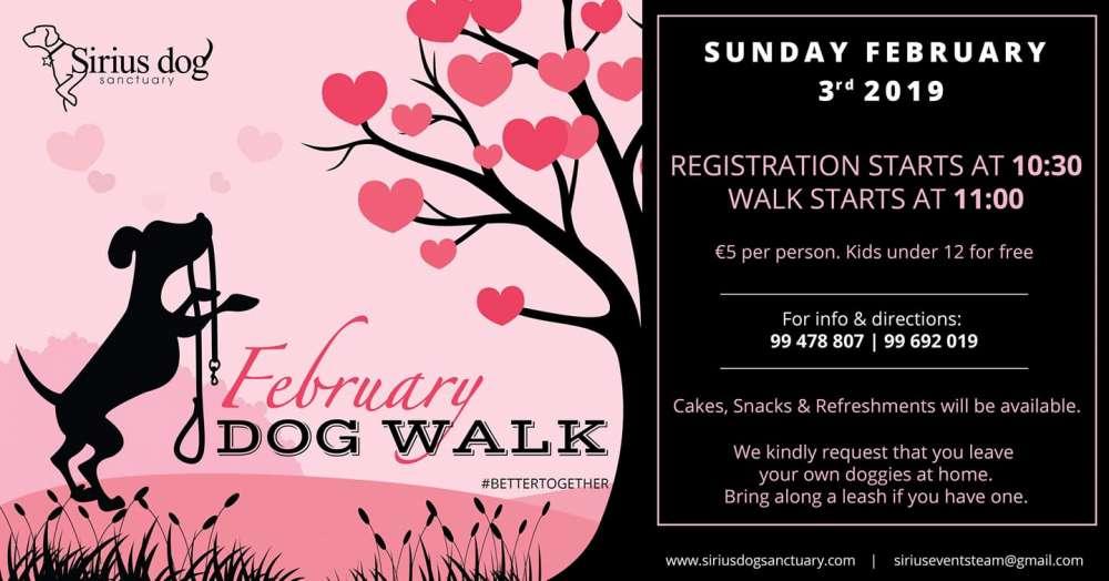 February Dog Walk
