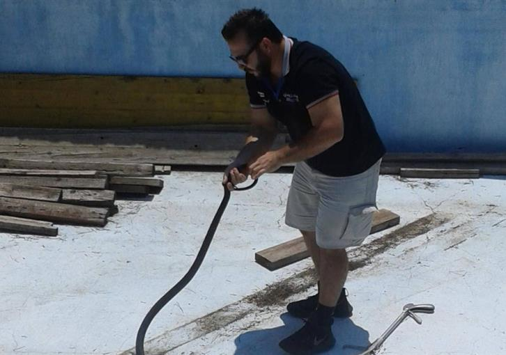 Pyrga empty pool snake rescued (video)