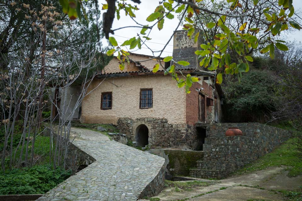 Solea Culture - Architecture Route