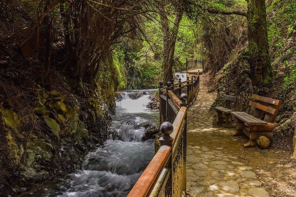 Stream, Creek, Scenic, Bench, Nature, Woods, Scenery