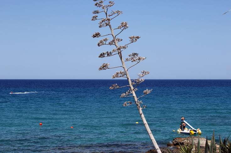 Cyprus aims to be among 30 most competitive tourist destinations