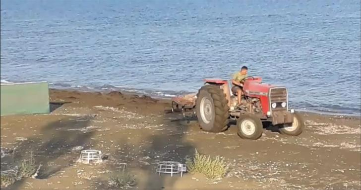 Tractor filmed 'at work' near Larnaca turtle nesting beach (video)