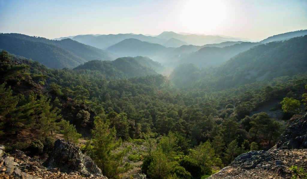 Search for four children missing in Troodos