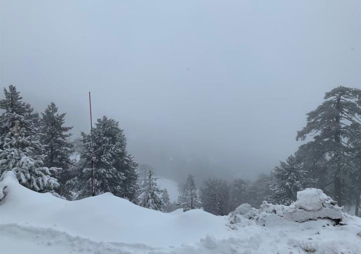 Magical scenes in Troodos; all roads closed (photos
