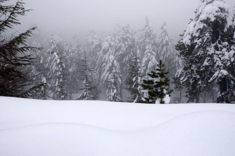 The magic of Troodos in pictures
