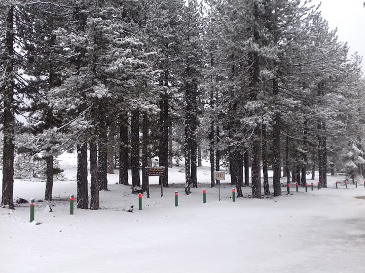 First snow in Troodos Mountains (video