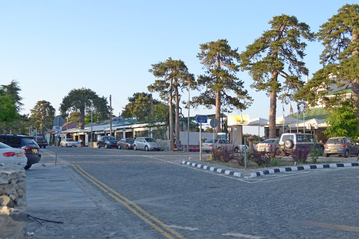 Greens want action on Troodos Square horses