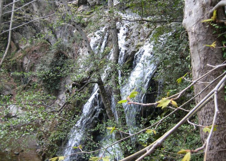 22 year old French man trapped near Millomeri waterfall rescued