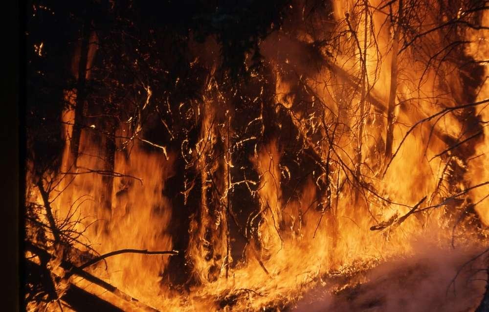 Akamas fires extinguished