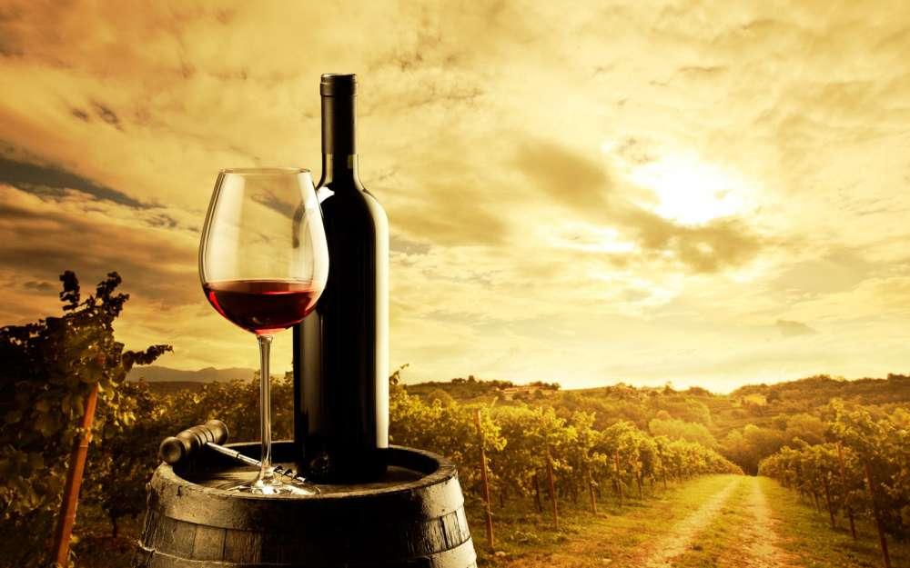 Paphos: Wine festival at Stroumpi under way