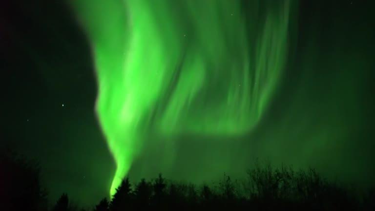 Stunning Green Northern Lights Dazzle Canada Night Sky