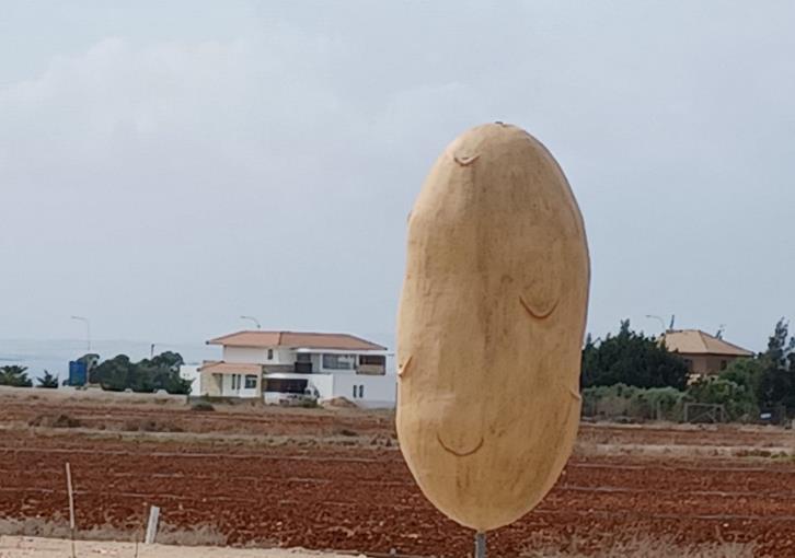 Potato Effigy